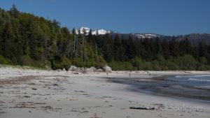 Calvert Island  West Beach