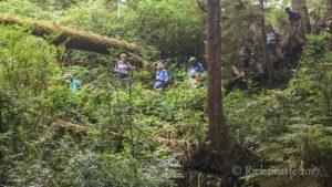 Schooners Cove Trail