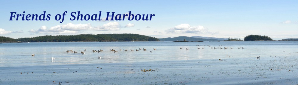 Friends of Shoal Harbour Sanctuary Society logo