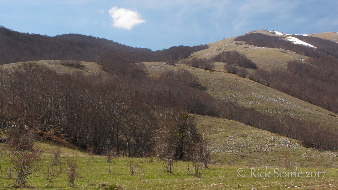 Mountains North of Pescasseroli