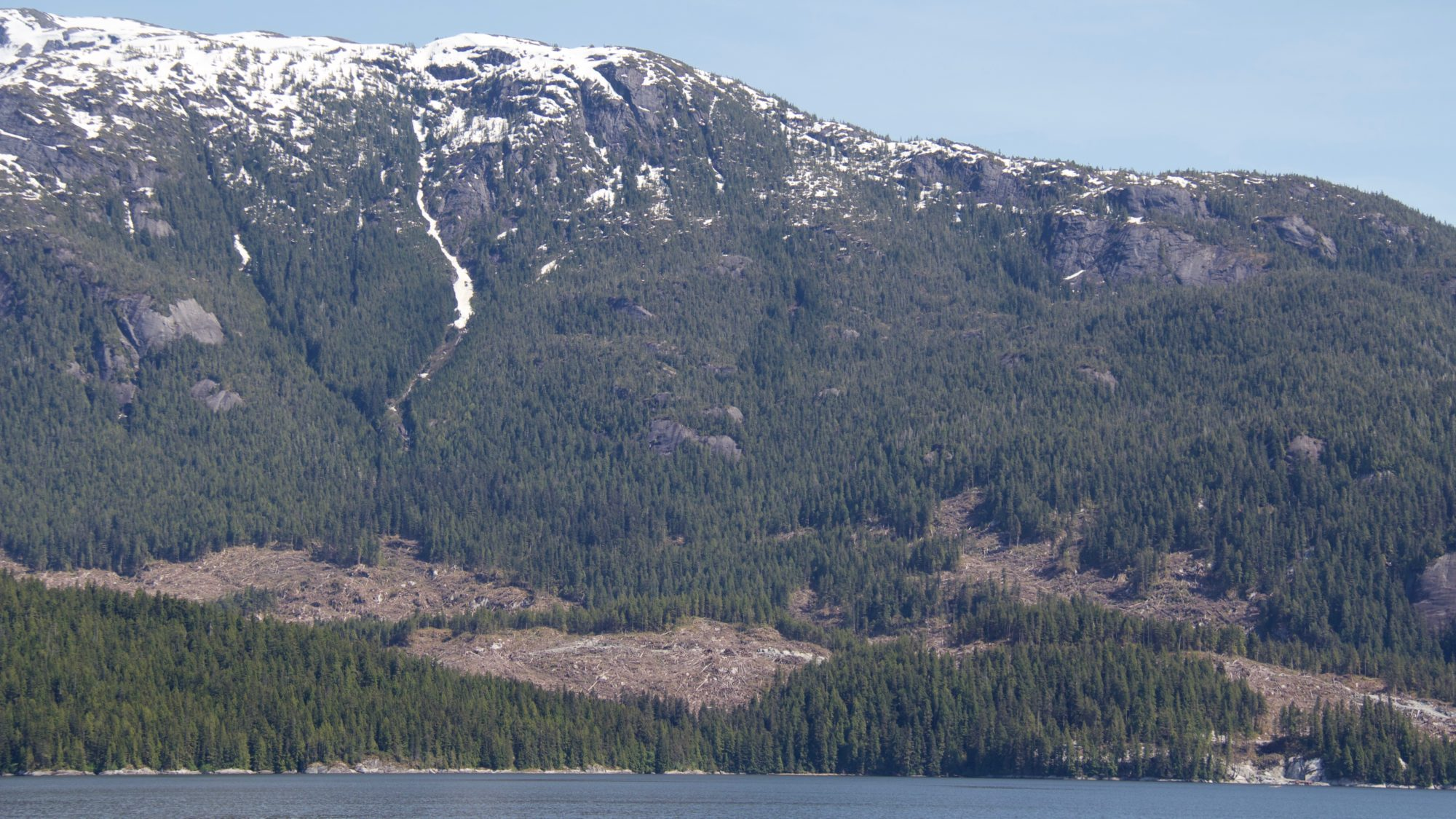 Logging in the Great Bear Rainforest