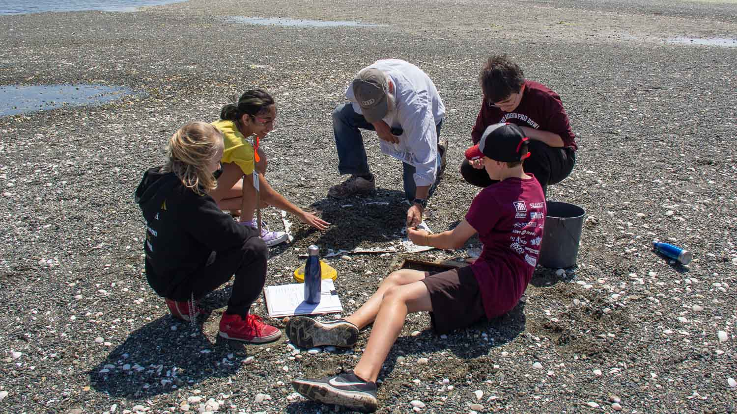 Volunteer and students count clams