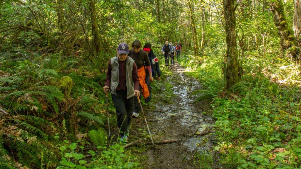 Hiking Portland Island