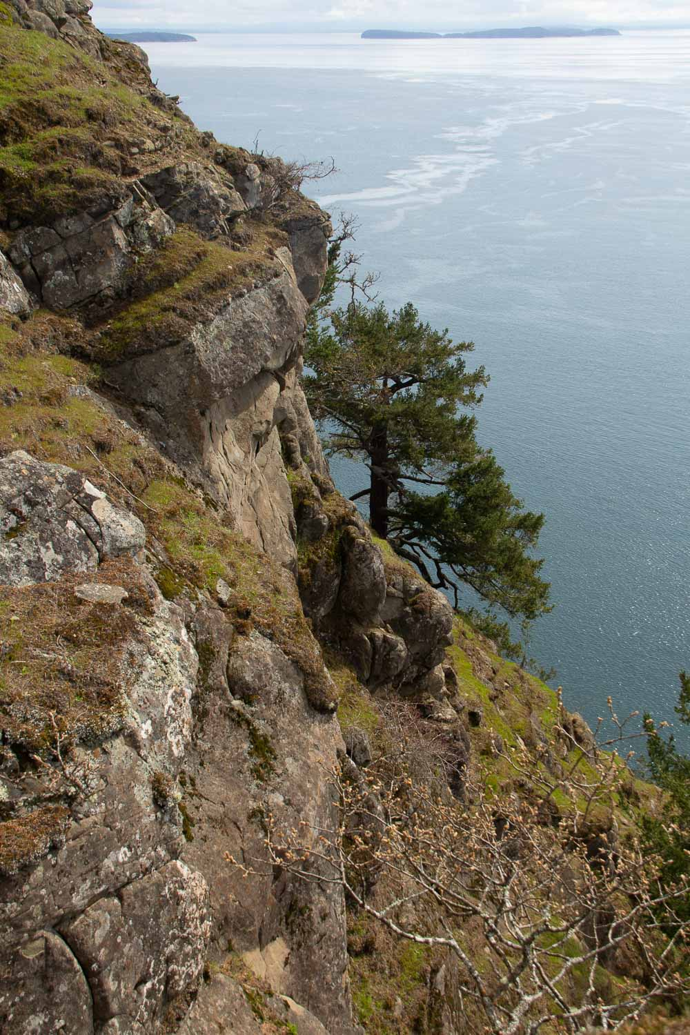 View from Monarch Head