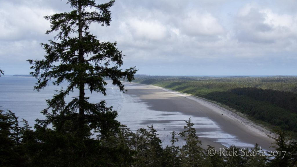 North Beach from Tow Hill Viewpoint