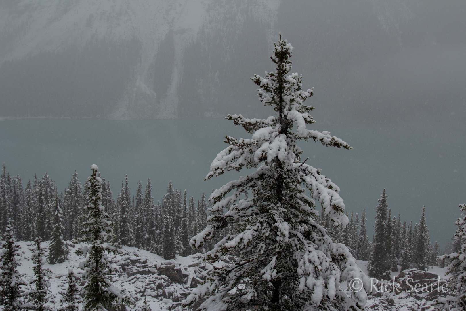 Peyoto Lake and Snow