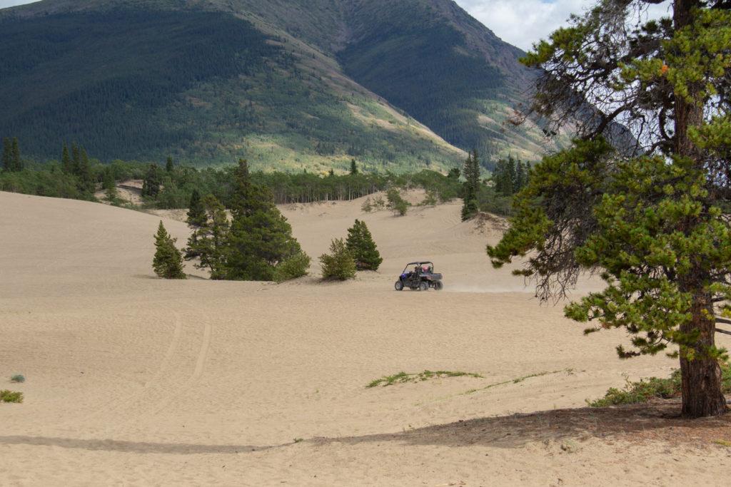 Dune Buggy Carcross Desert