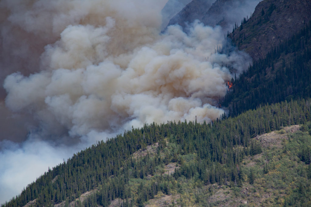 Forest Fire near Carcross