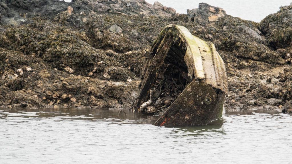 Shoal Harbour Derelict Boat