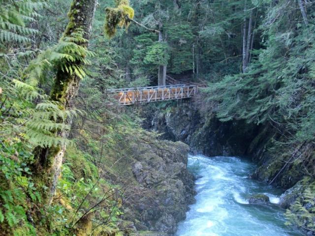 Bridge over lower Qualicum Falls