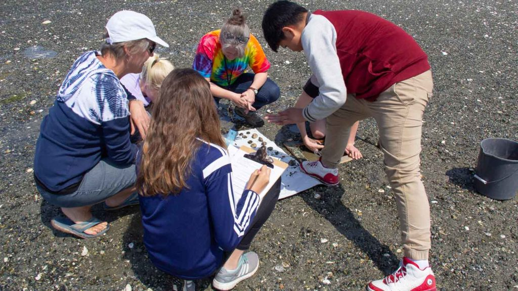 Volunteer and Students Counting Clams