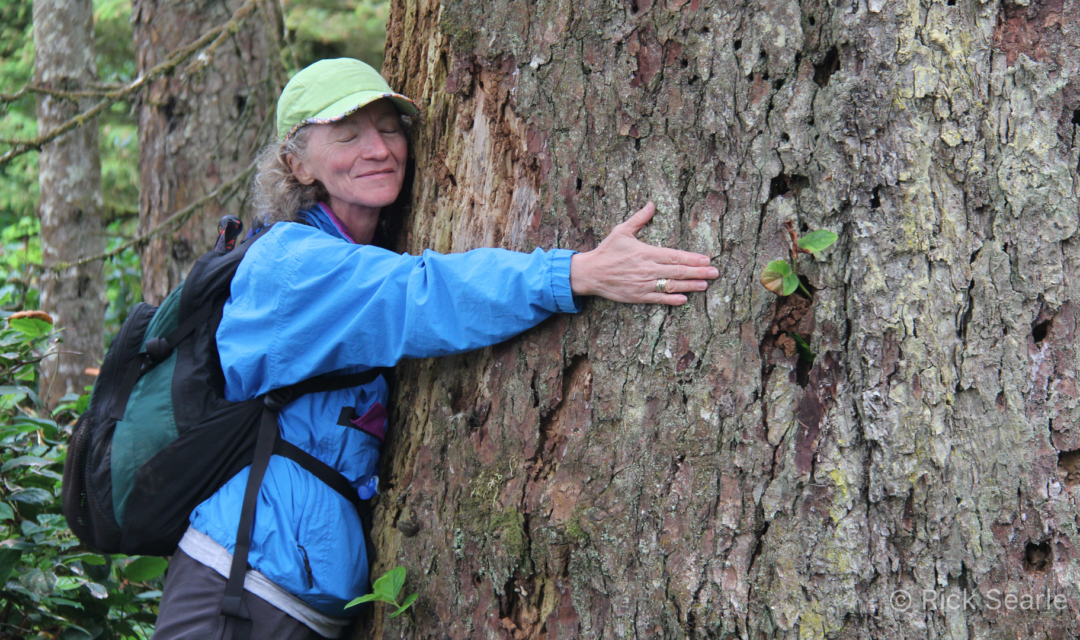 Hiker Hugging a Tree-4078