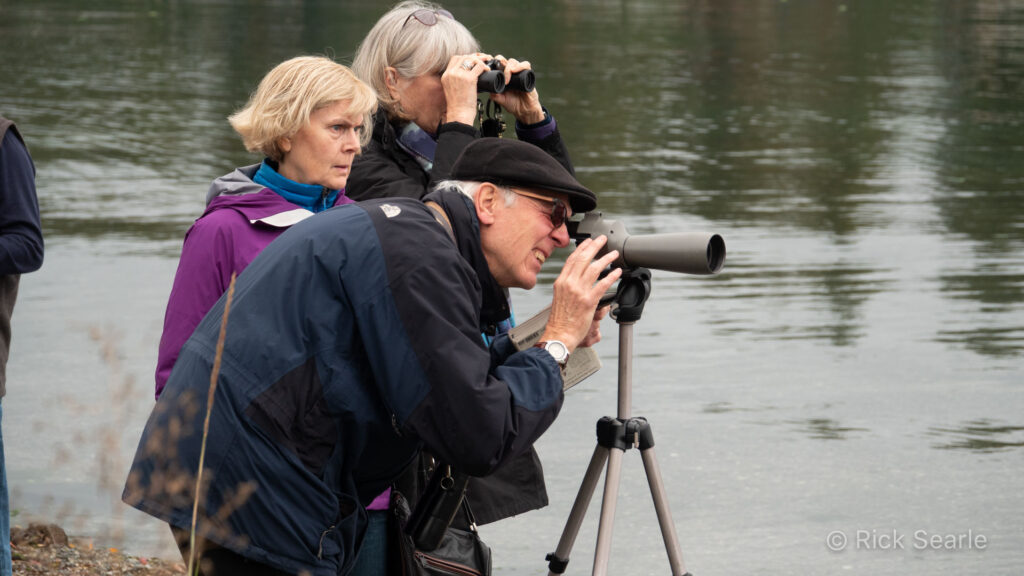 Bird watchers with binoculars and spotting scope